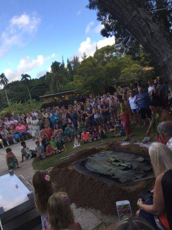 Perfect Hawaiian Experience