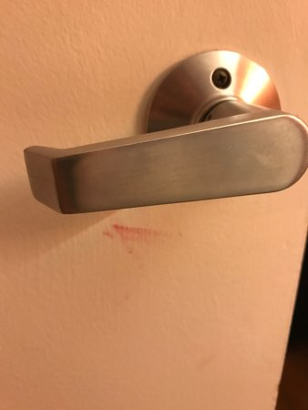 Amherst, OH: Blood smear on door