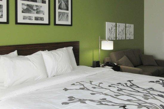 Columbia, TN: Guest Room