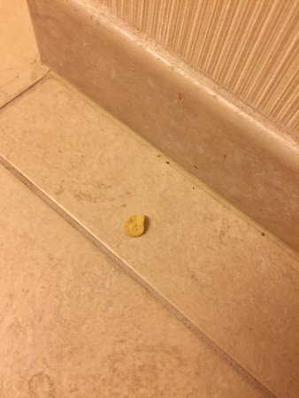 Ramada by Wyndham Levittown Bucks County: POTATO CHIP ON THE BR FLOOR!!! How does a maid miss this???