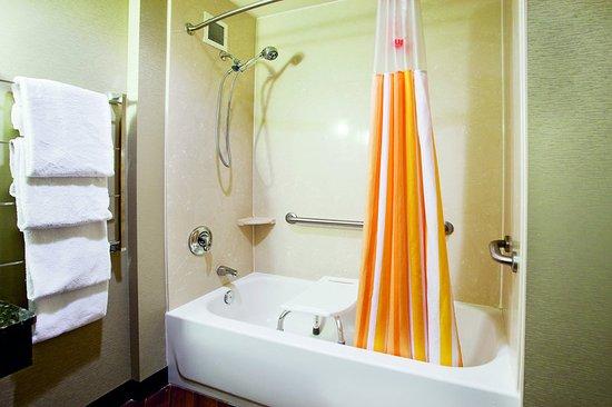 Smyrna, TN: Guest Room Bathroom