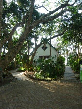 St Lucia Ecolodge and Conference Centre: Un des batiments