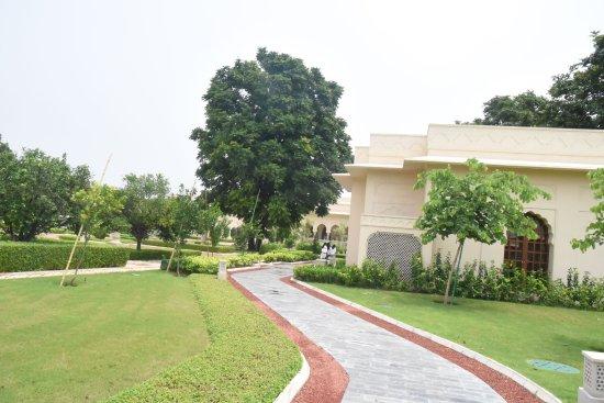 Mohali ภาพถ่าย