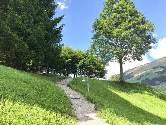 Lenk im Simmental, Switzerland: photo4.jpg