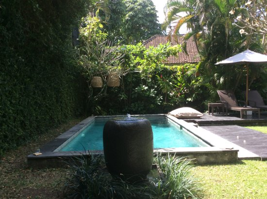 椰子別墅照片