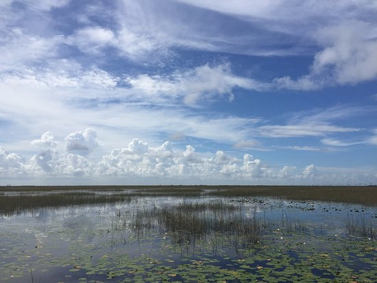 Air Boat USA: On the Everglades tour with AirBoat US