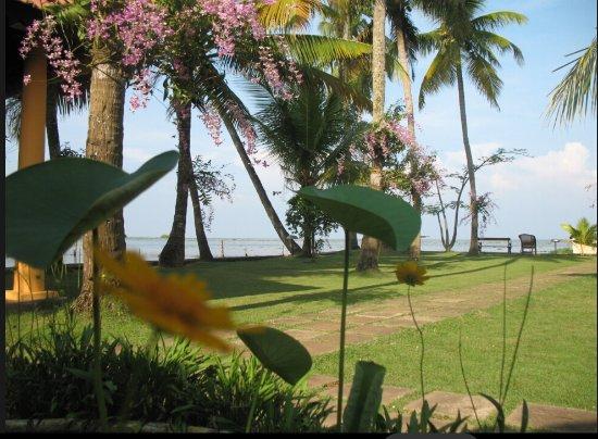 Kayaloram Heritage Lake Resort : Views