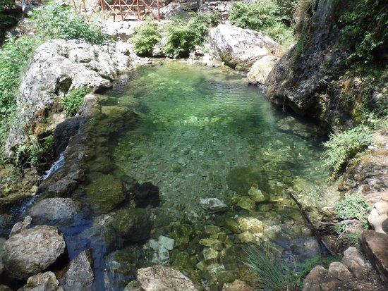 Cipresseta di Fontegreca