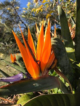 Woodford, Australia: Neurum Creek Bush Retreat