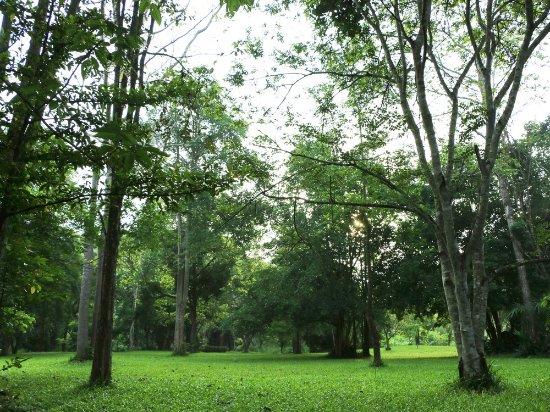 Landscape - Picture of Baan Maka Nature Lodge, Kaeng Krachan - Tripadvisor