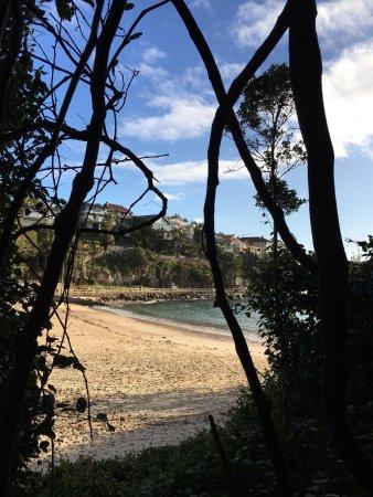 Manly, Austrália: photo0.jpg