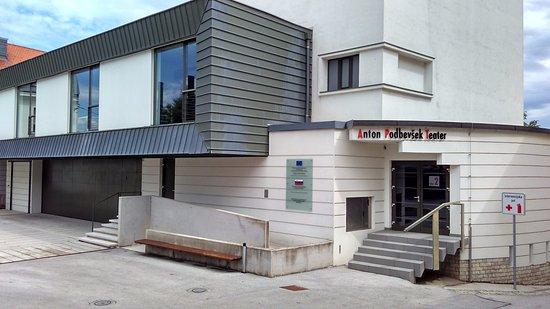 Anton Podbevsek Theatre