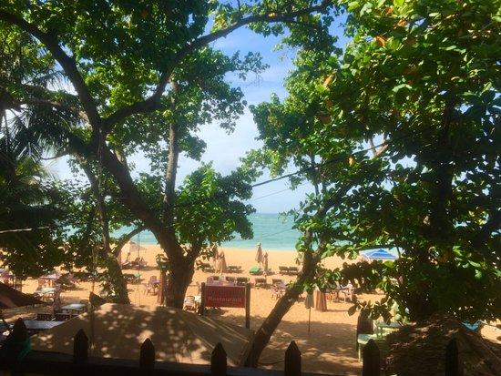 Tartaruga Hotel & Beach Restaurant: Вид с террасы, где проходят завтраки, вид замечательный на океан