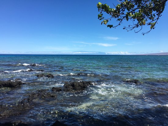 Mauna Lani Bay Hotel & Bungalows: Walking the grounds