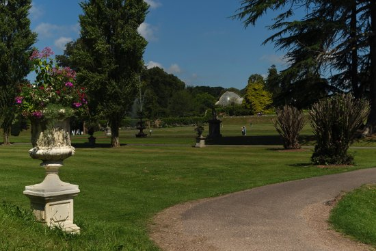 Bicton Park Botanical Gardens: view looking back up toward the entrance