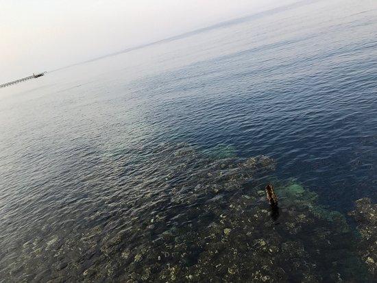 Rixos Sharm El Sheikh: photo2.jpg