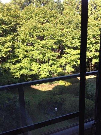 Shiki Resort Gora Saika : 部屋からの眺め