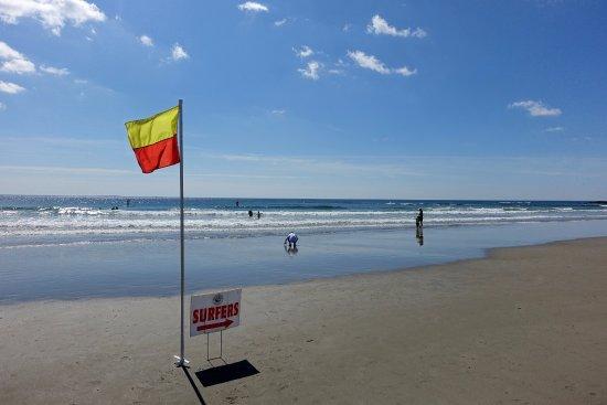 Low Tide Picture Of Wallis Sands State Beach Rye Tripadvisor