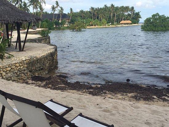 Buddha S Surf Resort Room Rates