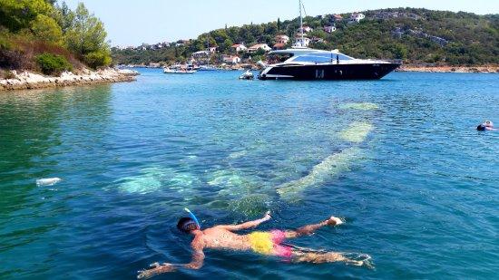 Slatine, Croacia: Snorkeling