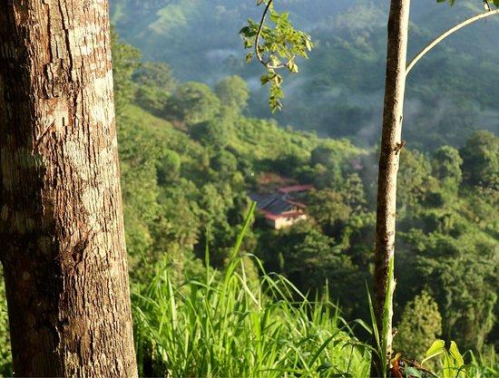 Santa Marta District, Colombia: photo7.jpg