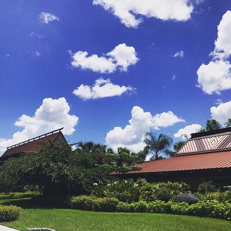 Disney's Polynesian Village Resort: photo9.jpg