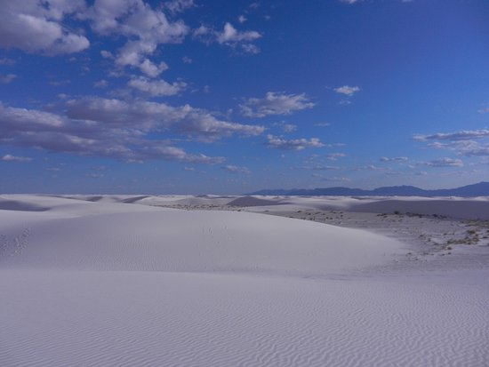 White Sands National Monument: photo8.jpg