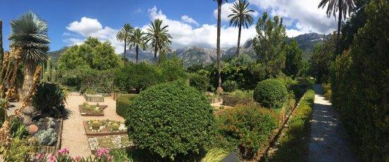Jardín Botánico de Soller: photo0.jpg