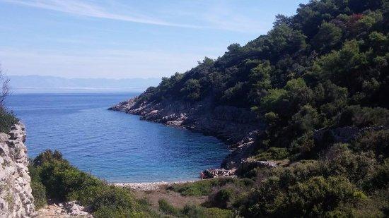 Beach Javorna