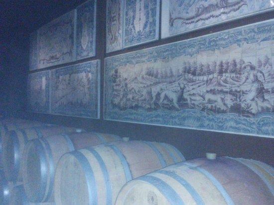 Vila Nogueira de Azeitao, Португалия: Estágio do vinho