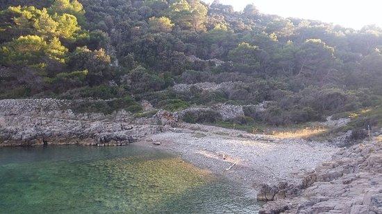 Beach Javorna: 9 spiaggia