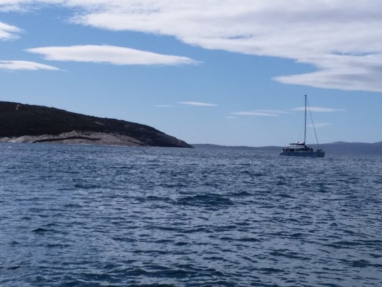 Albany, Australië: Where the catamaran is ,that is where the whales were .You could only see the blower spraying wa