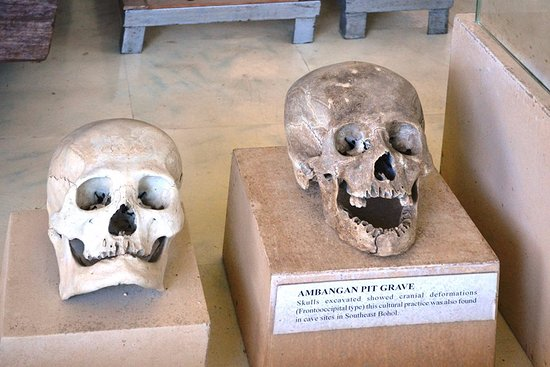 Balangay Shrine Museum: Skulls dating back to the 14th and the 15th centuries