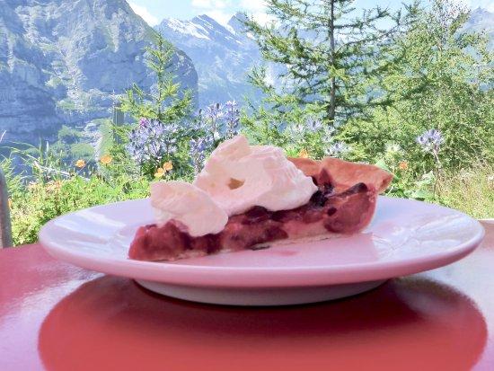 Hotel Jungfrau Wengernalp: The best plum tart and cream in Switzerland!