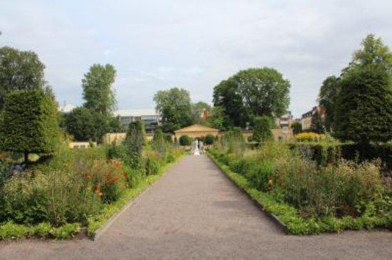 Linnaeus Garden : リンネの庭園