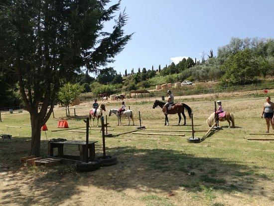 Il Ranch di Carlotta: IMG-20170820-WA0024_large.jpg