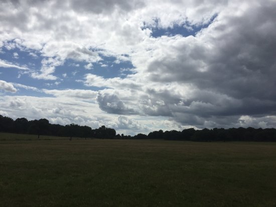 Richmond-upon-Thames, UK: This photo really doesn't do any justice for just how vast Richmond Park is!