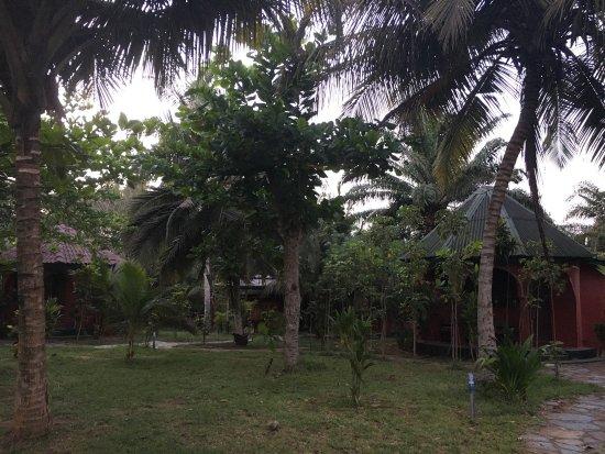 Busua, غانا: photo6.jpg