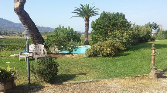Gavorrano, Italien: 20170819_100758_large.jpg