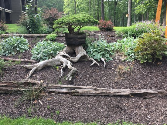 The Lodge at Woodloch: Yet another inspiring and relaxing garden, next to the fire pit and rocking chairs!