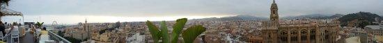 AC Hotel Malaga Palacio : THE VIEWS