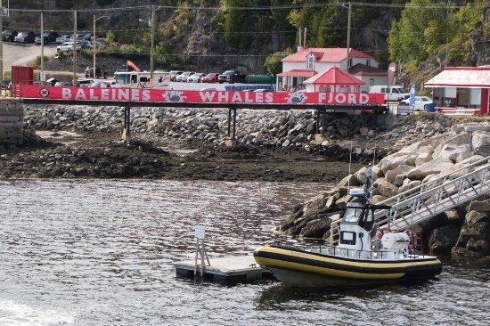 Tadoussac, Canada: Imbarco a Baie Sainte Catherine