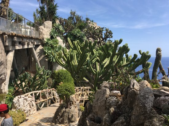 grotte du jardin exotique monaco picture of exotic garden jardin exotique la condamine. Black Bedroom Furniture Sets. Home Design Ideas