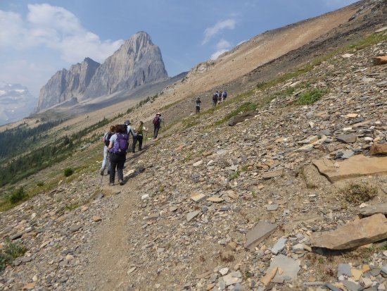 Field, Canadá: It's a trek, but so worth the effort when you get to the top.