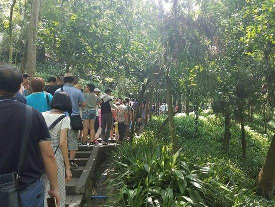Mount Qingcheng: Crowds!