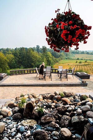 Langley City, Canada:  Winery view