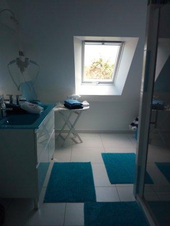 Tracy-sur-Mer, ฝรั่งเศส: Bagno della camera Fraicheur Marine
