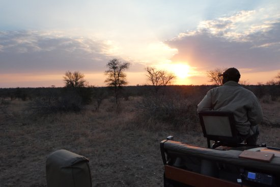 Timbavati Private Nature Reserve Photo