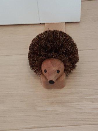 Mere, UK: Our Hedgehog doorstop!