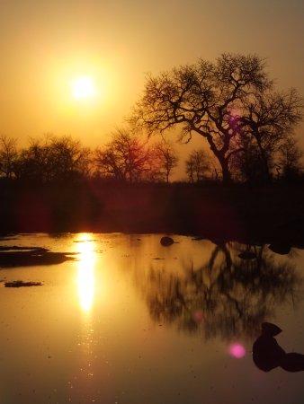 nThambo Tree Camp: Sundowners